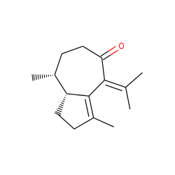 zierone(elleryone)